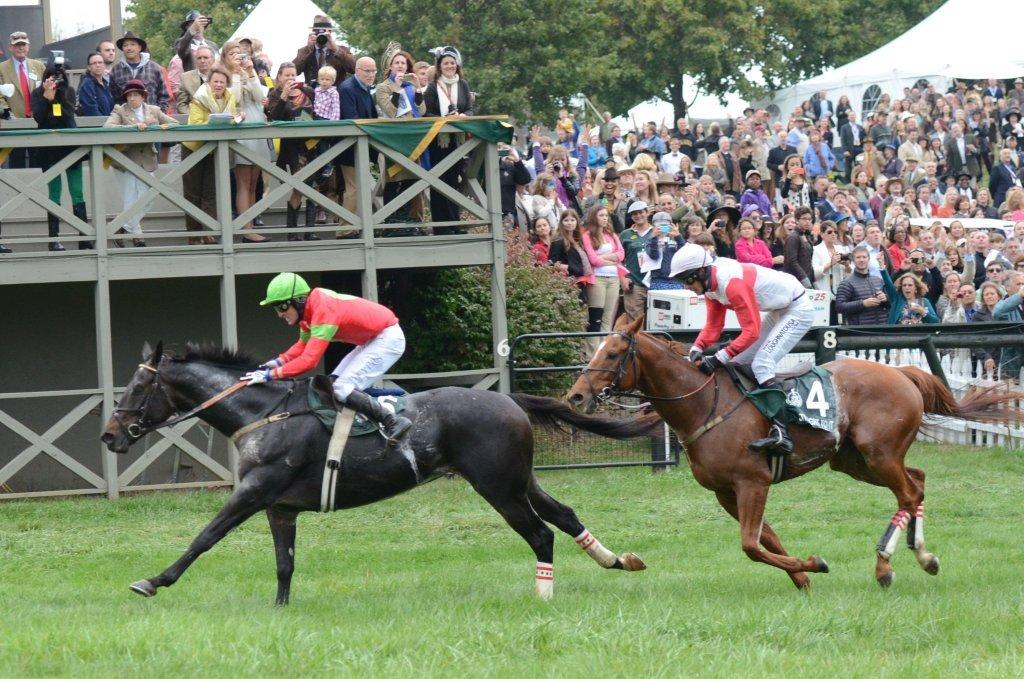 Foyle crossing the line in the International Gold Cup. Photo Courtesy Liz Callar.