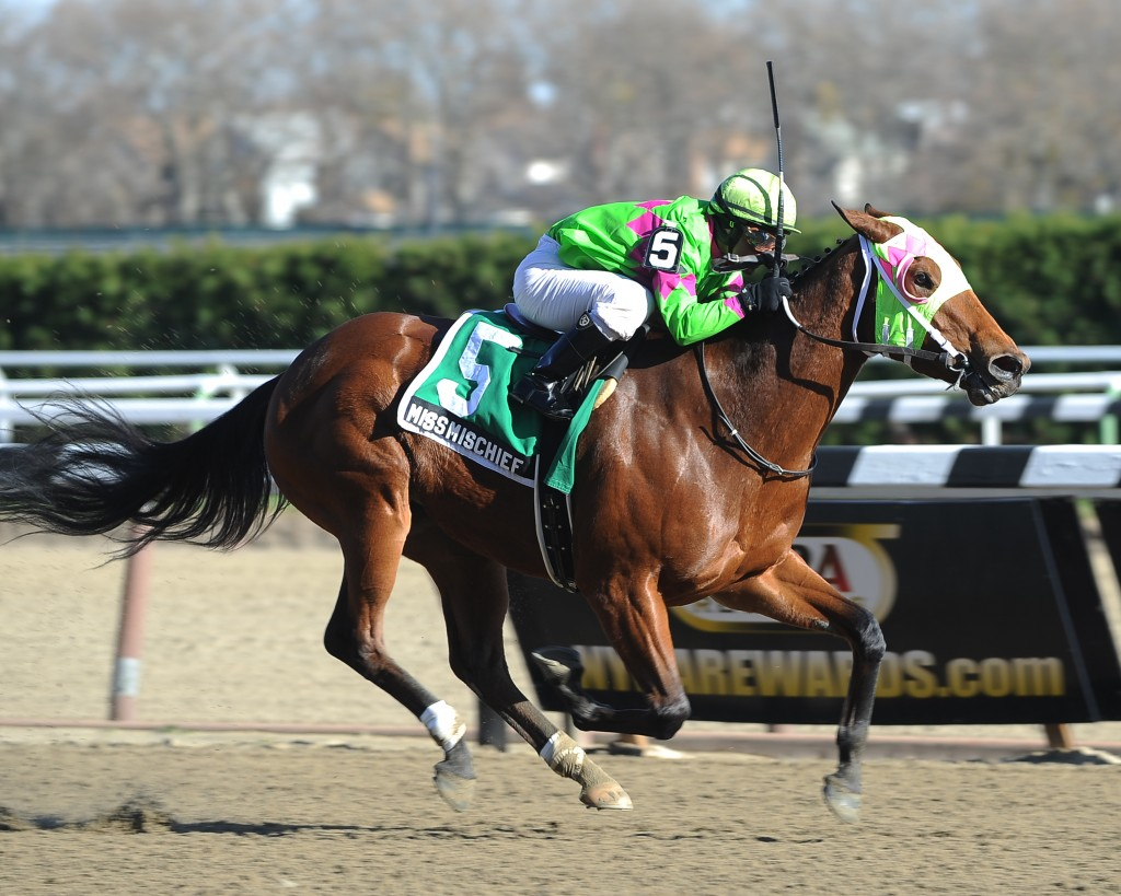 Miss Mischief dominating in the Pearly City Stakes. Photo courtesy Adam Coglianese.