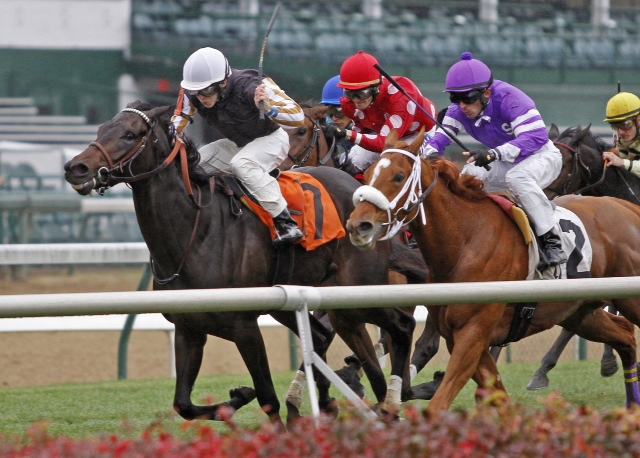 Union Prayer, a Virginia-bred Dixie Union (bred by Ned Evans), broke his maiden at Churchill Downs on November 6. Kellyn Gorder trains for Los Samanes LLC.