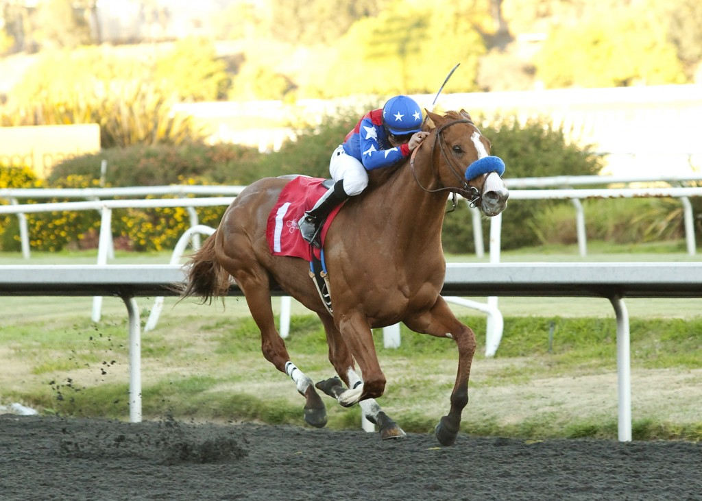 Ned Evans-bred Blueskiesnrainbows won the Grade II Native Diver for his second graded stakes score. Photo Courtesy Benoit.