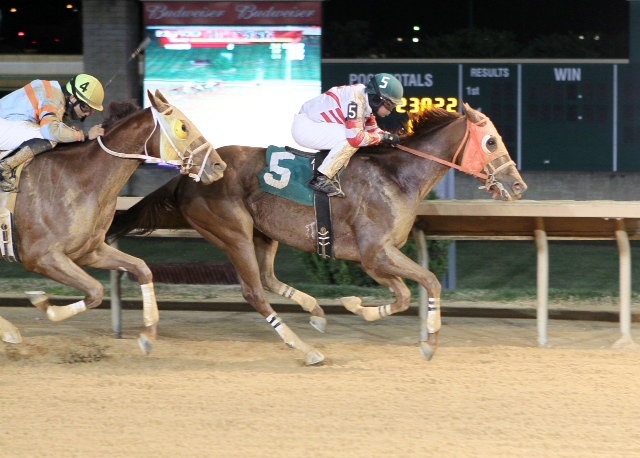 Hunter's Hollow, owned and bred by Sam English, won an allowance at Charles Town on November 16.