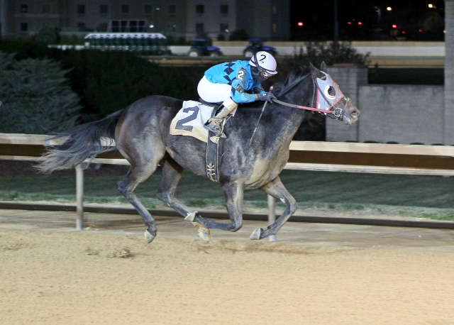 Ms. Fool Proof, trained by Larry Curtis, won an allowance at Charles Town on November 14.