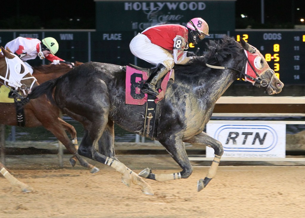 Saint Zita, owned and trained by Patrick Nuesch, won a claiming race at Charles Town on December 20 as one of three Virginia-connected winners on the night.