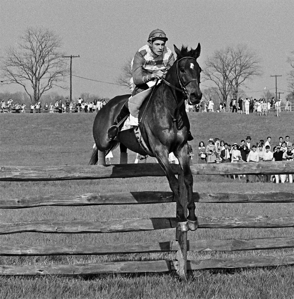 Tom Voss up in the 1969 Maryland Hunt Cup, at the third fence on Edwin Merryman's Gassendi. Photo courtesy Douglass Lees.