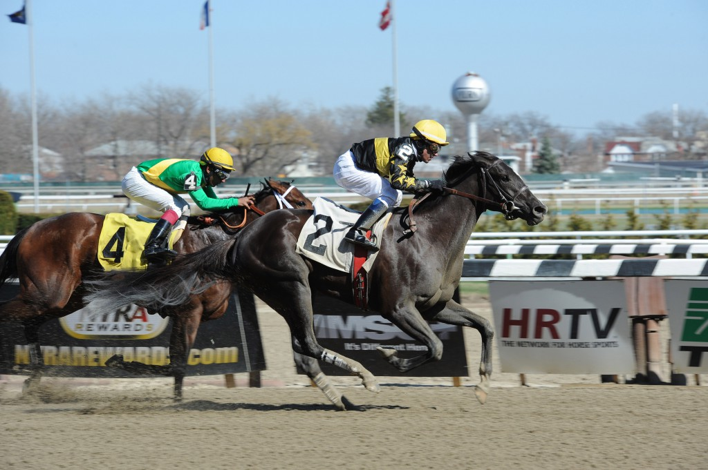 Risque Reality wins an Aqueduct allowance April 6. Photo courtesy Adam Conglianese.