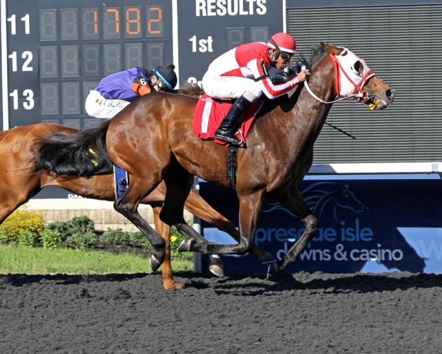 Ghost Is Fine, bred by Althea D. Richards and Adena Springs, broke her maiden at PID on June 5. Photo courtesy of Coady Photography.