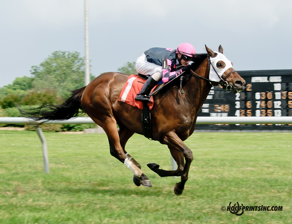 Rose Brier, bred by Bill Backer, wins a Delaware Park allowance by 4 lengths on June 25. Photo courtesy of Hoofprints.