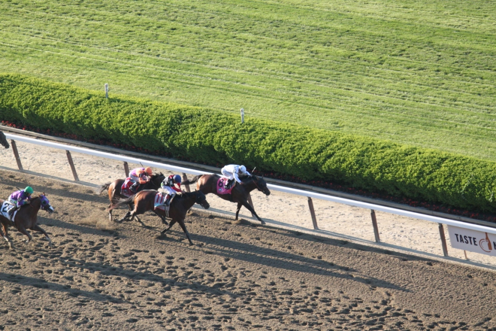 After being stuck almost five wide through the first turn, Tonalist pressed the leaders in the stretch, bearing down on front-runner Commissioner... Photo courtesy Nick Hahn.