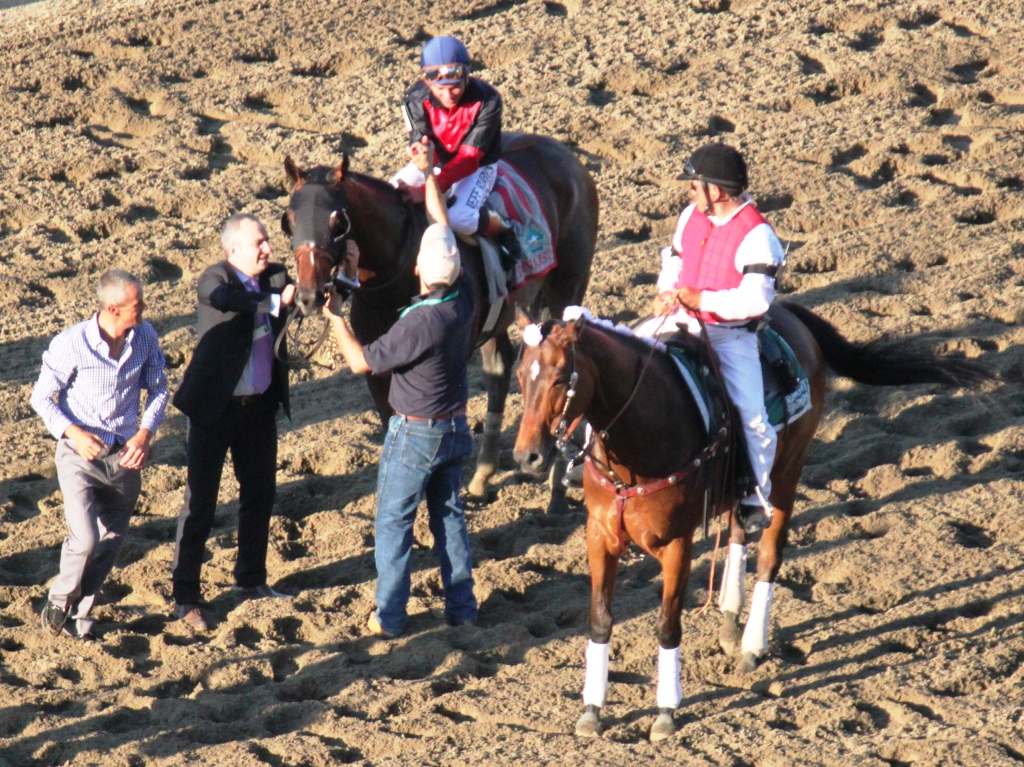 Here, Tonalist comes back safely to head to the winner's circle! Photo courtesy Nick Hahn.