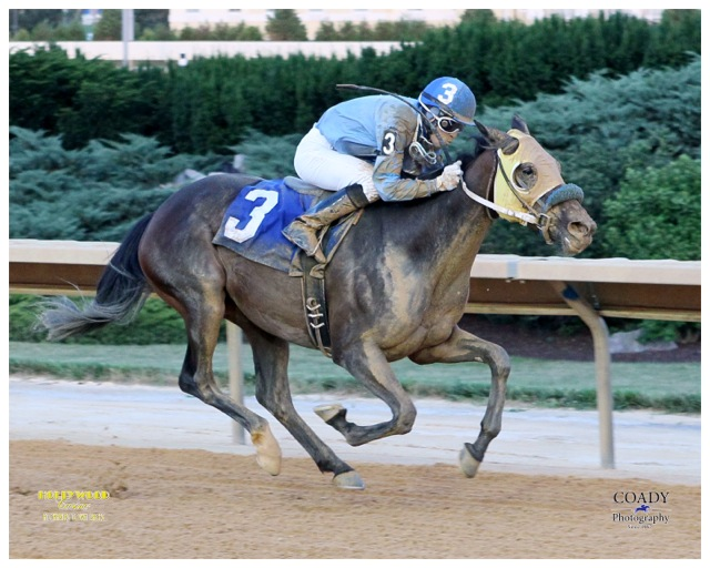 C M's Quietann, owned and bred by Tracy Willis, won a Charles Town maiden on June 28. Photo courtesy Coady Photography.