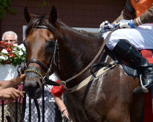 Awesome Pearl after winning the Jonathan Kiser. Photo courtesy Susie Raisher.
