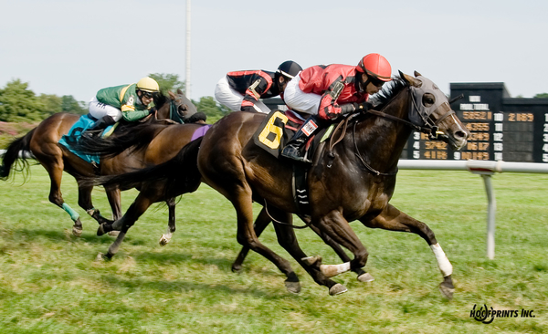 Complete St. winning at Delaware Park on August 18.