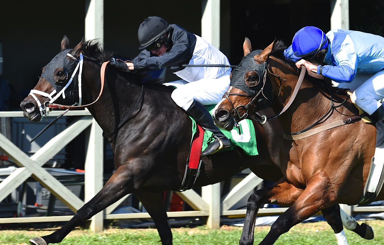 Grand Old Game beats  Slews Best Quality in the 7-furlong fourth race. Photo courtesy Douglas Lees.