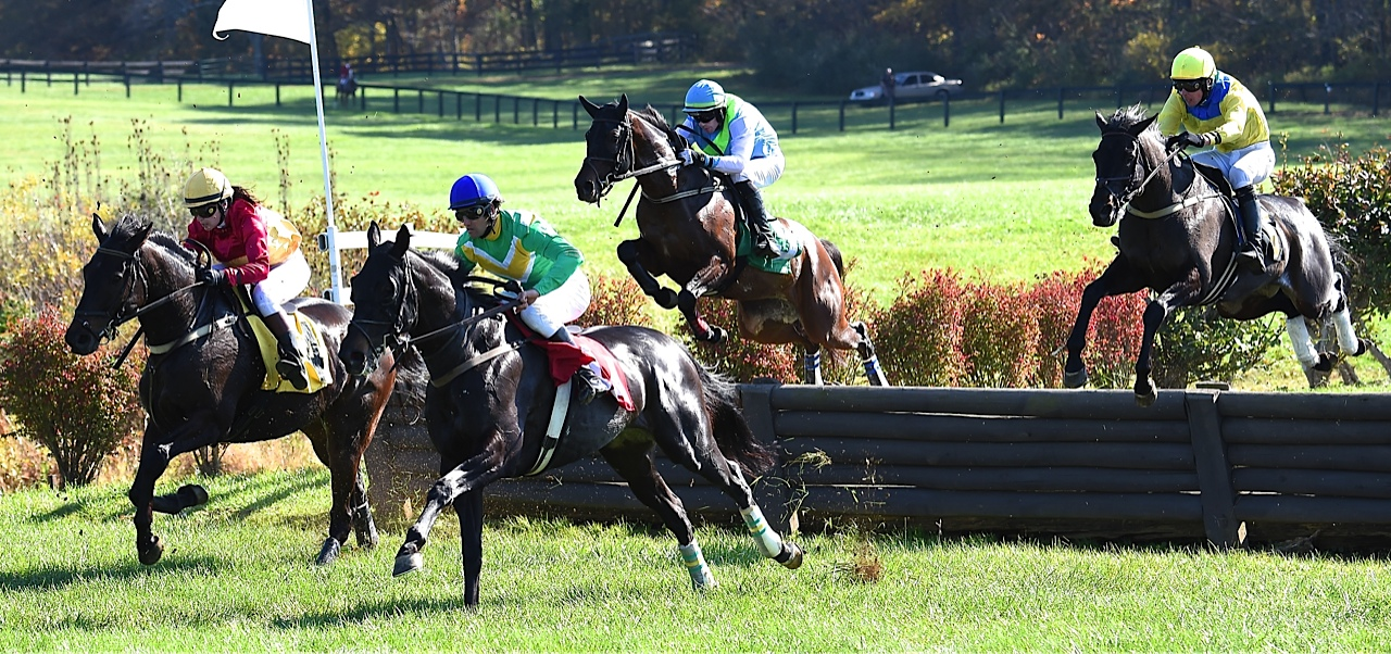 Country Cousin (R) wins the allowance timber fifth race. Photo courtesy Douglas Lees.