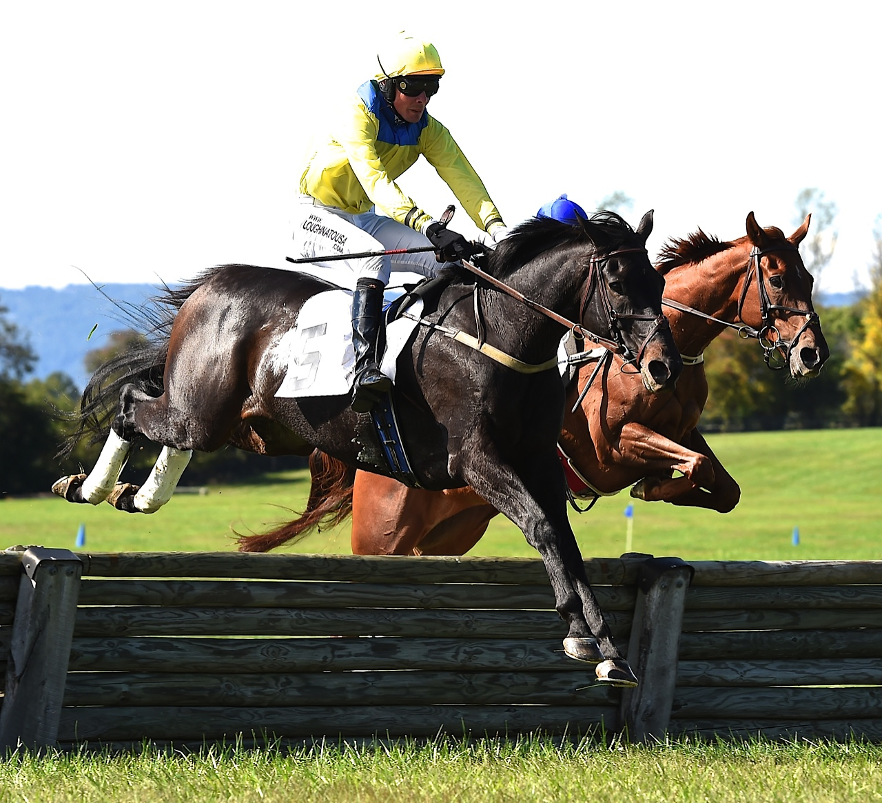 Oakwood Stable's Country Cousin was 1st in the $15, 000 timber race. Adios Diablo was 2nd. Photo courtesy Lees.