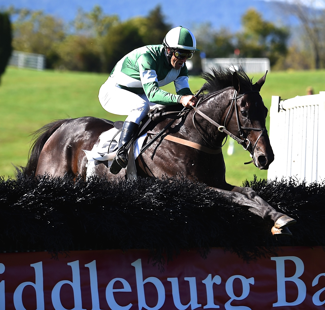 Noble Stables' King Of All Diamonds won the maiden hurdle race. Photo courtesy Lees.