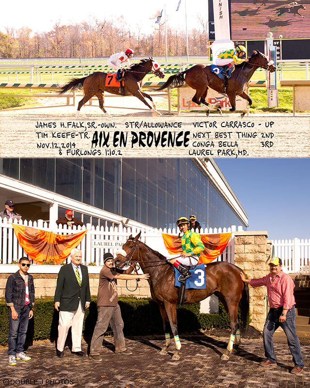 Aix En Provence, bred by James Falk, is shown in the winners circle at Laurel in 2014. The 9 year old got her 10th win February 3rd at Laurel. Photo by Jim McCue.