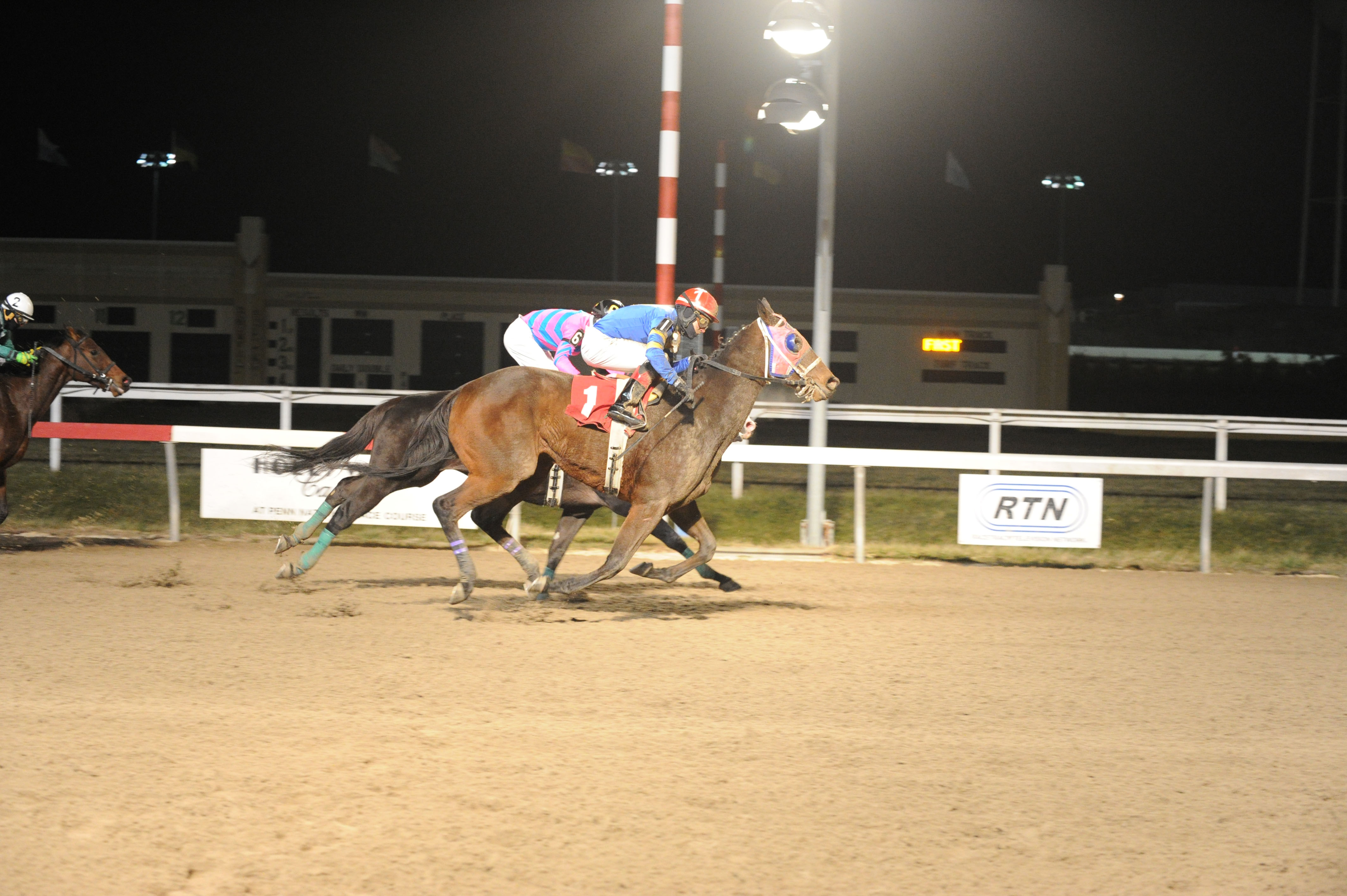 Morgan's Ford-bred No Free Lunch winning an allowance at Penn National on 11/28. Photo courtesy BND Photography.