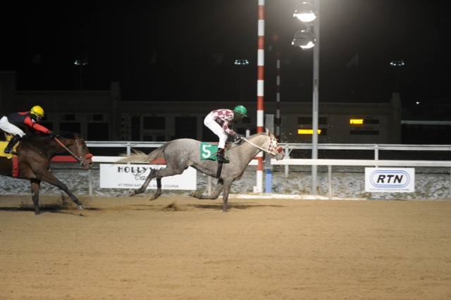 Firestone-bred Dream Voyage won by a 1/2 lengths at Penn National on Jan. 8. Photo courtesy of BND Photography.