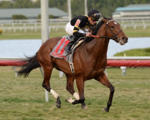 Long On Value winning the Canadian Turf at Gulfstream. Photo courtesy Adam Coglianese.