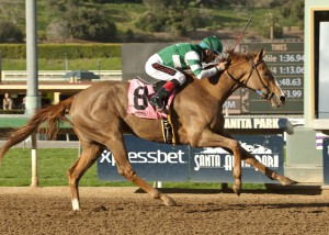 Stellar Wind won the Grade III, $100,000 Santa Ysabel Stakes February 28 at Santa Anita Park