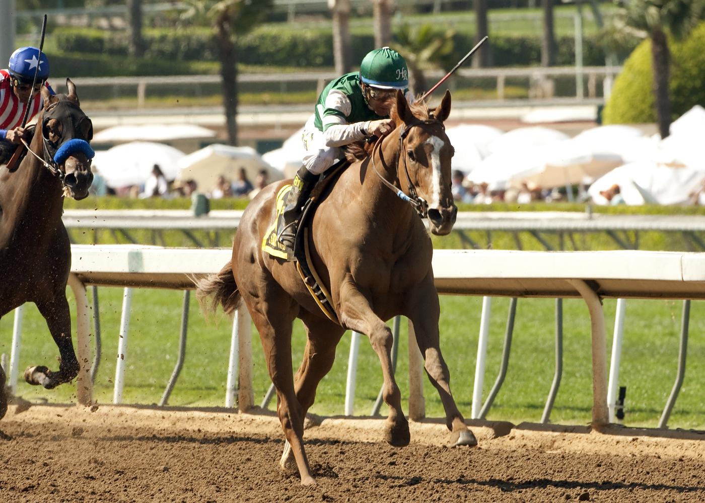 Virginia-bred Stellar Wind wins the Grade I $400,000 Santa Anita Oaks April 4, 2015 at Santa Anita.