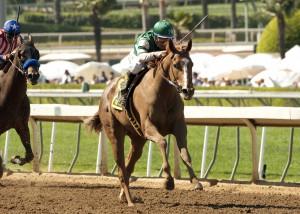 Hronis Racing's Stellar Wind and jockey Victor Espinoza win the Grade I $400,000 Santa Anita Oaks Saturday, April 4, 2015 at Santa Anita Park, Arcadia, CA.   ©Benoit Photo