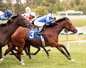 Away We Go scores in the 2015 Jamestown Stakes at Laurel for trainer Rodney Jenkins