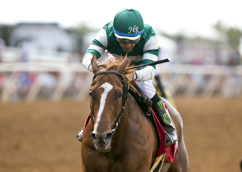 Hronis Racing's Stellar Wind jockey Victor Espinoza win the Grade III, $100,000 Torrey Pines Stakes, Sunday, August 30, 2015 at Del Mar Thoroughbred Club, Del Mar CA. © BENOIT PHOTO