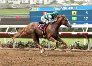 Hronis Racing's Stellar Wind jockey Victor Espinoza win the Grade III, $100,000 Torrey Pines Stakes, Sunday, August 30, 2015 at Del Mar Thoroughbred Club, Del Mar CA. © BENOIT PHOTO