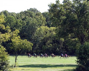 Horses race down the back side of the one mile turf course at Virginia Downs
