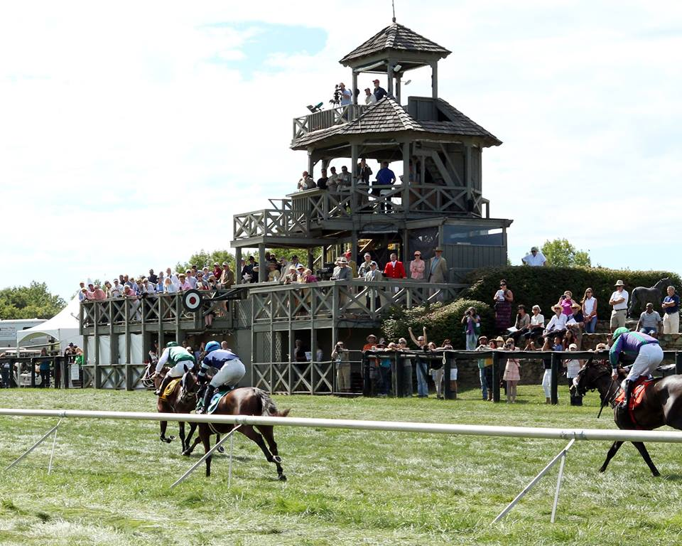 Horses race for the wire at Great Meadow. The 2016 International Gold Cup is slated for October 22.