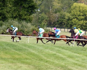 Horses race alongside an inner rail that was set up at Great Meadow for the inaugural Virginia Downs event.