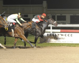 True Cost, bred by Anne Tucker, won November 5th at Penn National after being sent off at 34-1