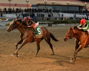 Tonalist holds off fast closing Red Vine in the 2015 Cigar Mile at Aqueduct. Photo by Joe Labozzetta.