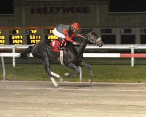 True Cost, bred by Anne Tucker, wins her third straight race December 3rd at Penn National.