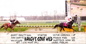 Nancy's Gone Wild, bred by Quest Realty & trained by Susan Cooney, wins a starter optional claiming race at Laurel November 29th by 2 3/4 lengths.