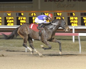 Simmstown, an 8-year-old Limehouse gelding, earns a 1 1/2 length triumph February 20th in a $19,000 claiming race at Penn National. Photo courtesy of B & D Photography.
