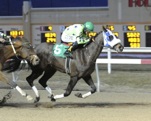 7-year-old Star of Magic scores a gate to wire victory February 20th at Penn National in his 48th lifetime start