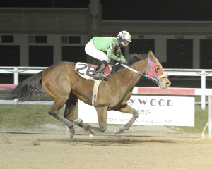 Desert Jewel captures a maiden special weight race at Penn National February 5th. Photo by B & D Photography.