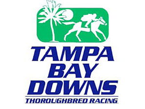 Special Envoy, bred by Mr. & Mrs. Bertram Firestone, continues to thrive at Tampa Bay Downs