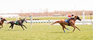 Just Funnin' Ya earned her fifth lifetime win at Laurel April 10th. Photo by Jim McCue.