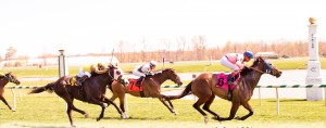 Made Bail captured a $45,000 allowance race at Laurel April 10th. Photo by Jim McCue.