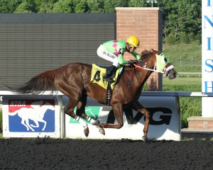 Disco Barbie is aiming for the Grade 2 Presque Isle Masters Stakes this fall. Photos courtesy of Coady Photography.