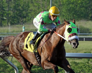 Disco Barbie, owned by Diane Manning, dominated in a $33,000 allowance race at  Presque Isle on Memorial Day