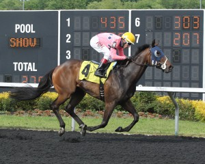 Cherokee Cousin, a Susan trainee, got his first lifetime win May 31st in a maiden claiming sprint at Presque Isle Downs. Photo by Coady Photography.