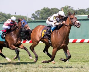 Two Notch Road wins his third straight Virginia-bred stakes race at Pimlico. Photo by Jim McCue.