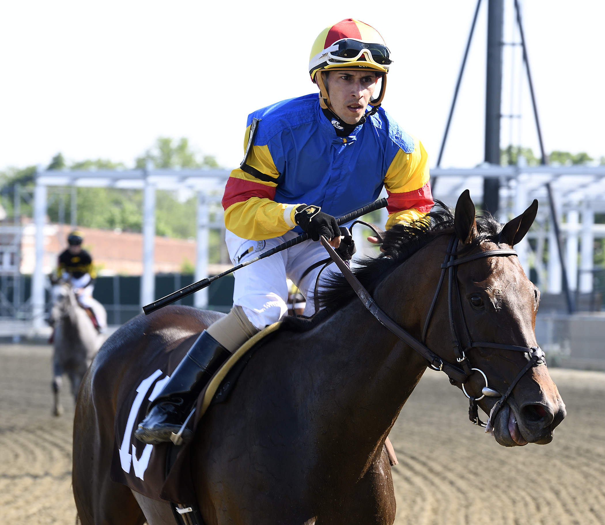 Jockey Alex Cintron was atop Queen Caroline in the June 25th Nellie Mae Cox Stakes. Photo by Jim McCue.