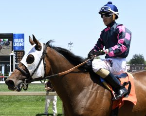 Jockey Alex Citron brings Rose Brier back to the winner's circle Saturday. Photo by Jerry Dzierwinski.
