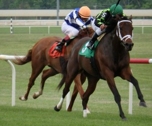 Sweet Victory scored a 1 1/2 length win Saturday in the $200,000 Penn Mile at Penn National. Photo by The Racing Biz.